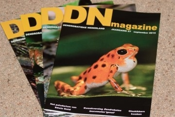 DN Magazines 2015