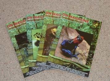 DN Magazines 2008